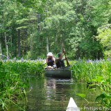 20150712-121618-061-kayakShirley