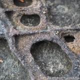 sandstone with shrinkage crack filling