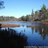 Binney Pond