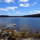 Willard Pond