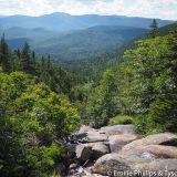 View into the Pemigewassett wilderness